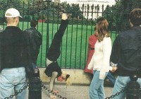 white-house-handstand-fence-people